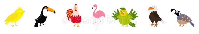 Línea del sistema del pájaro Canario, tucán, gallo del gallo, loro, flamenco, águila, codorniz Icono lindo de los personajes de d stock de ilustración