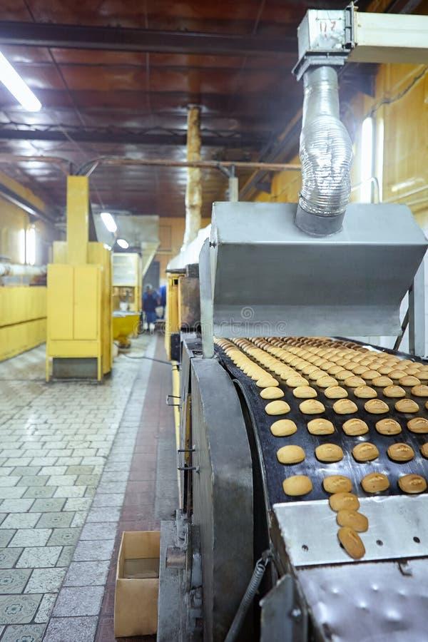 Línea del transportador con muchas tortas de especia cocinadas en la planta de la confitería imagenes de archivo