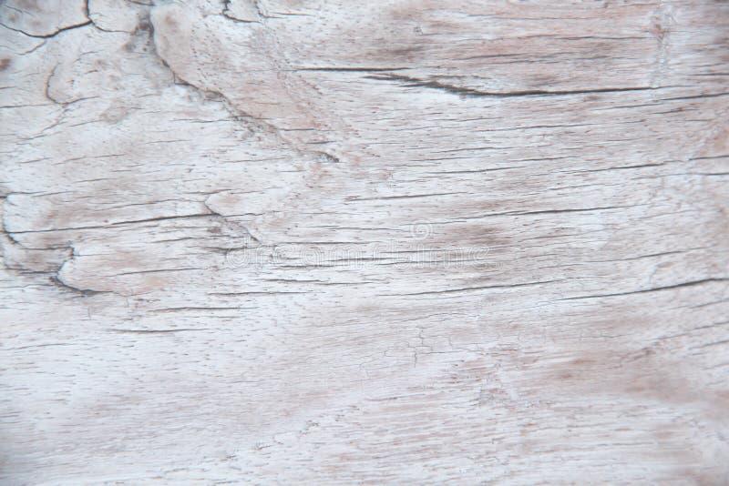 Línea delicada en piel horizontal de la naturaleza de los modelos del viejo extracto de madera de la textura para el fondo imágenes de archivo libres de regalías