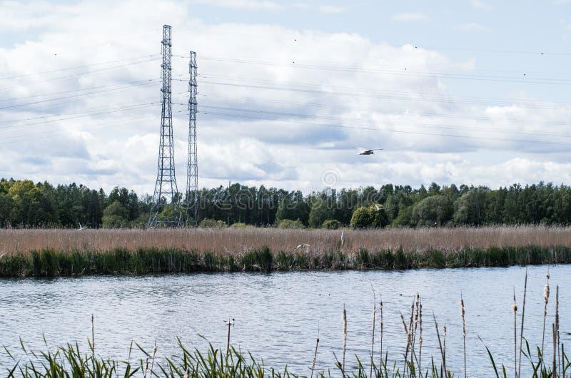 Línea eléctrica cerca del lago fotografía de archivo libre de regalías