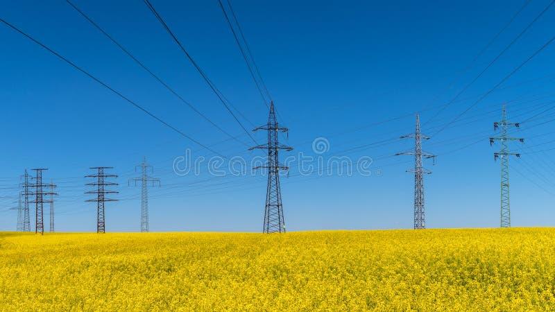 Línea eléctrica en campo de la violación Napus de la brassica Eléctrico y energía renovable imágenes de archivo libres de regalías