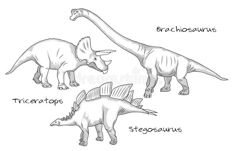 Línea fina ejemplos del estilo del grabado, diversas clases de dinosaurios prehistóricos, incluye el brachiosaurus, stegosaurus ilustración del vector