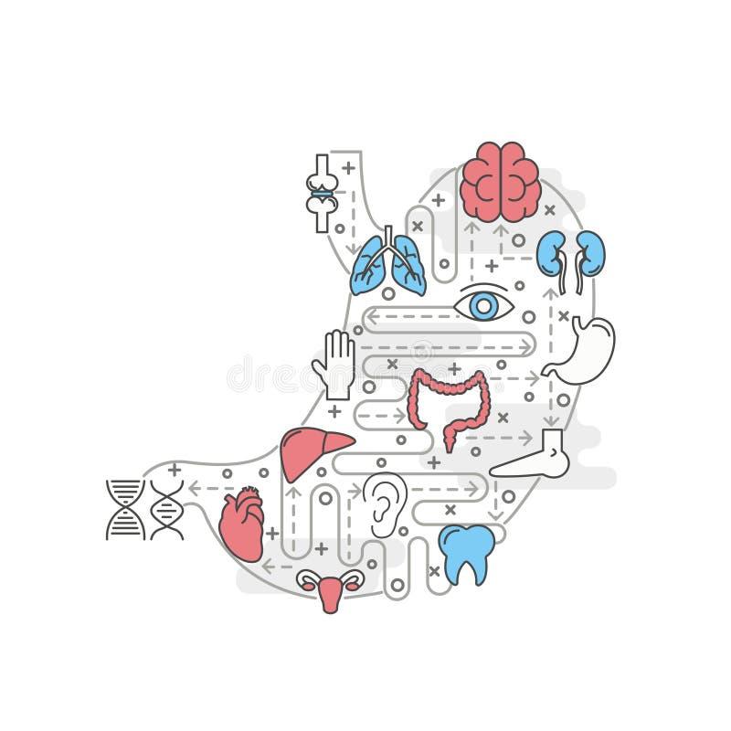 Línea fina plantilla del vector de la bandera del cartel de los órganos humanos del arte libre illustration