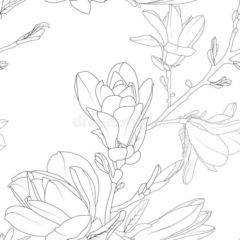 Línea floral detallada modelo del bosquejo del ramo de las flores de la magnolia ilustración del vector