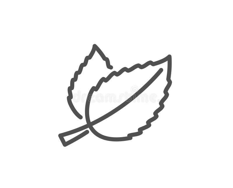 Línea icono de las hojas de menta Hoja herbaria stock de ilustración