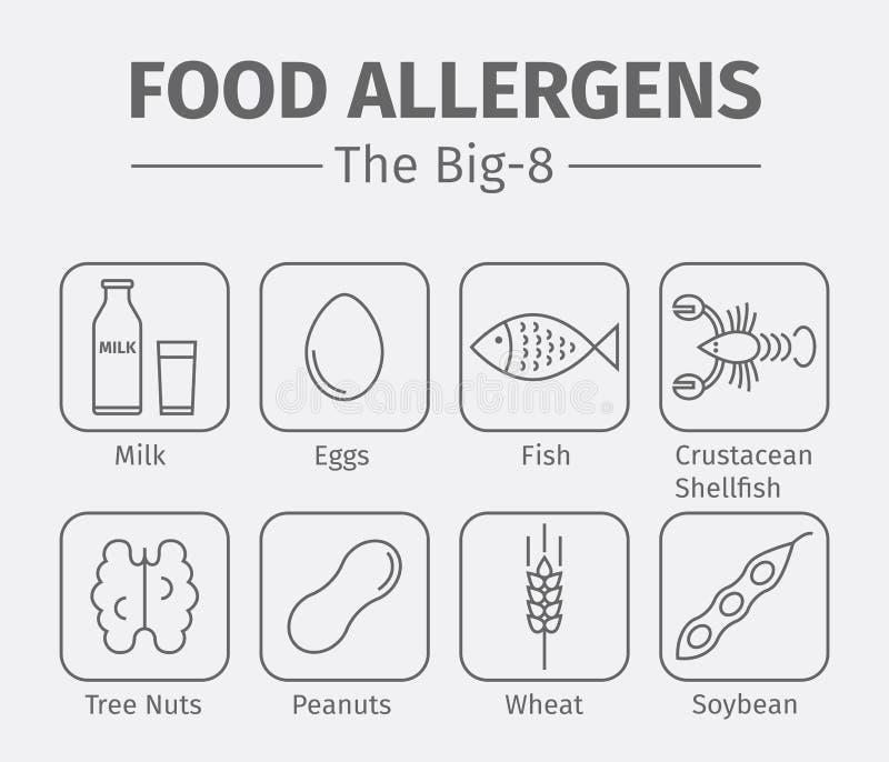 Línea iconos de los alergénicos de la comida Un grupo de las ocho comidas alergénicas principales se refiere a menudo como el Big stock de ilustración
