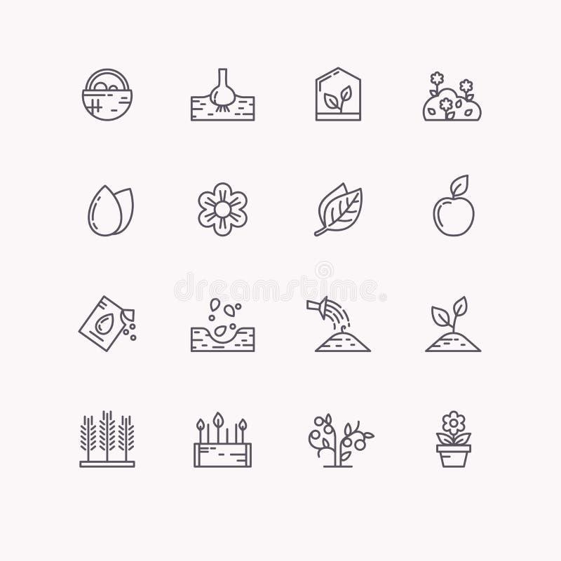 Línea iconos del vector para cultivar un huerto libre illustration