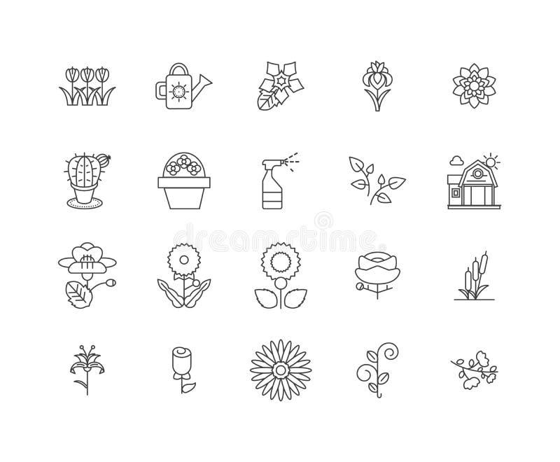 Línea iconos, muestras, sistema del vector, concepto de la floristería del ejemplo del esquema stock de ilustración