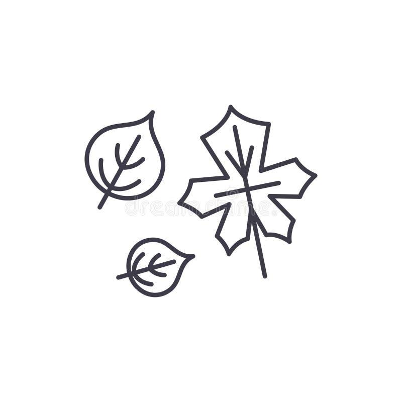 Línea linda concepto de las hojas de otoño del icono Ejemplo linear de otoño del vector lindo de las hojas, símbolo, muestra stock de ilustración