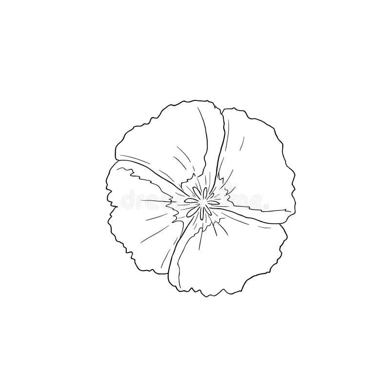 Línea negra Art Clarkia Flower, siempre la llamamos adiós para saltar ilustración del vector