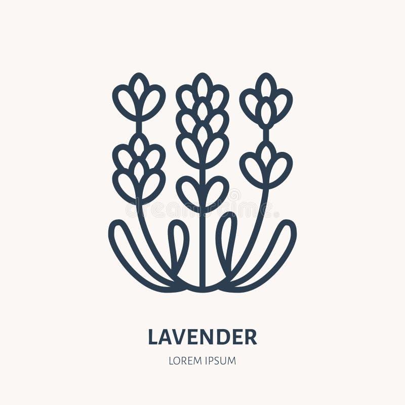 Línea plana icono de la flor de la lavanda Ejemplo del vector de la planta medicinal Muestra fina para la medicina herbaria, logo stock de ilustración