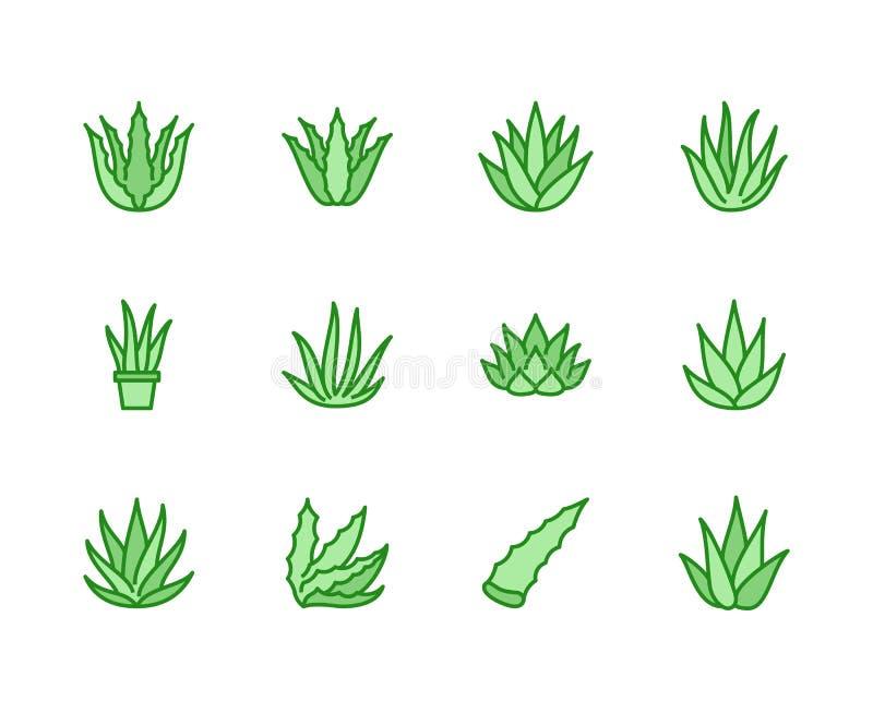 Línea plana iconos de Vera del áloe Ejemplos del vector de la planta suculenta, tropical, muestras finas para el alimento biológi stock de ilustración