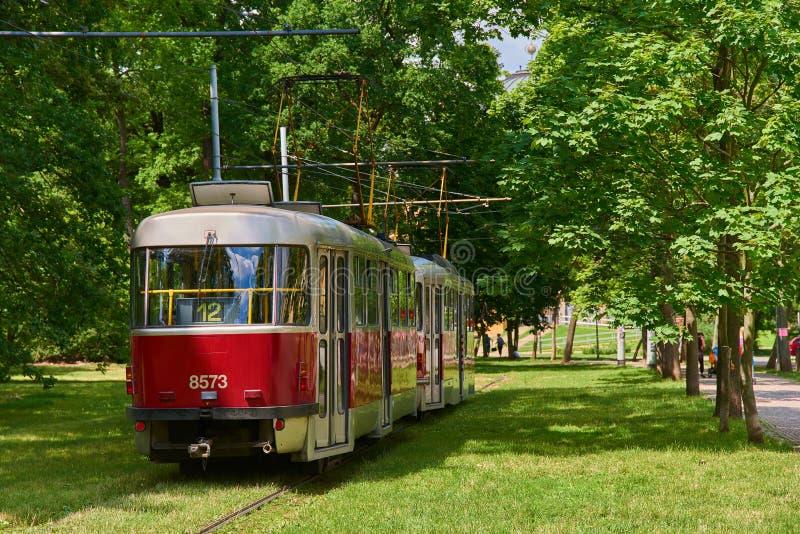 Línea 12 tranvía de Praga en las pistas en área herbosa verde del parque imagenes de archivo