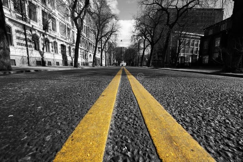 Líneas amarillas dobles en calle de la ciudad foto de archivo libre de regalías