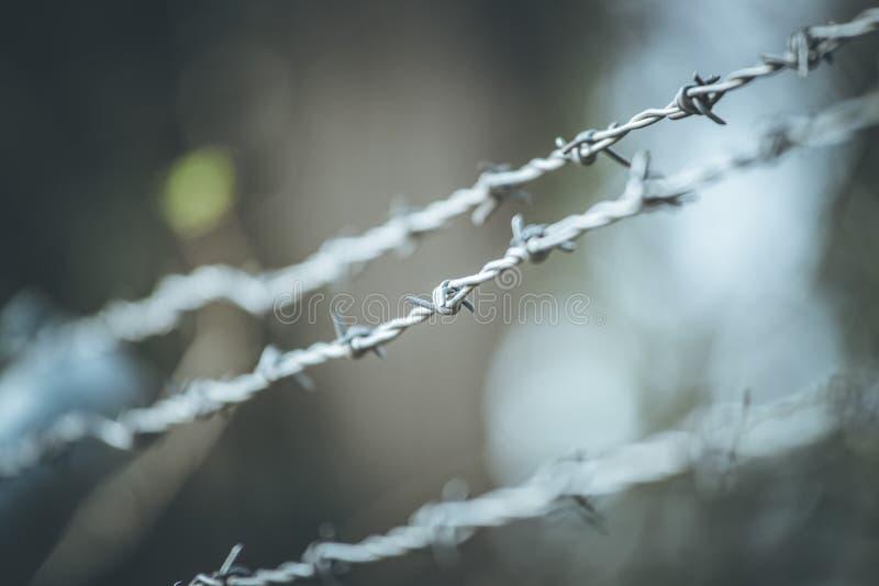Líneas de alambre de púas para demarcar la frontera foto de archivo libre de regalías