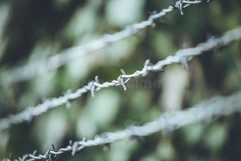 Líneas de alambre de púas para demarcar la frontera fotos de archivo