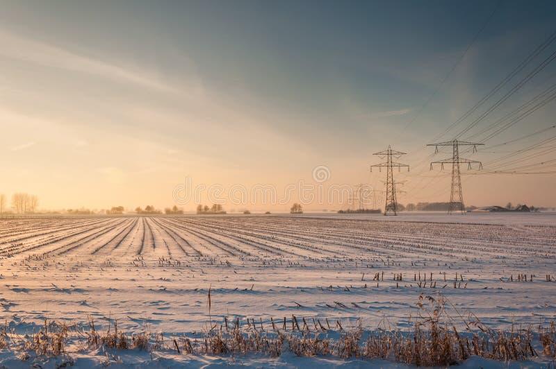 Líneas de alto voltaje y pilones en un campo de rastrojo nevoso fotografía de archivo