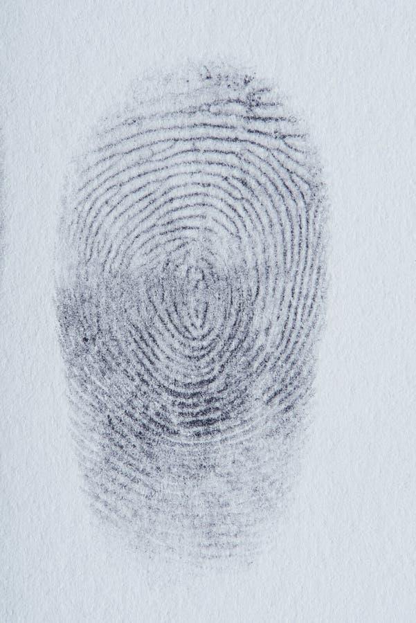 Líneas de huella dactilar fotos de archivo