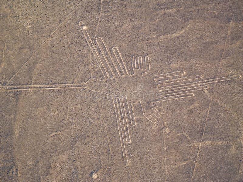 Líneas de Nazca fotos de archivo libres de regalías