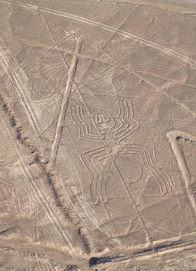 Líneas de Nazca foto de archivo libre de regalías