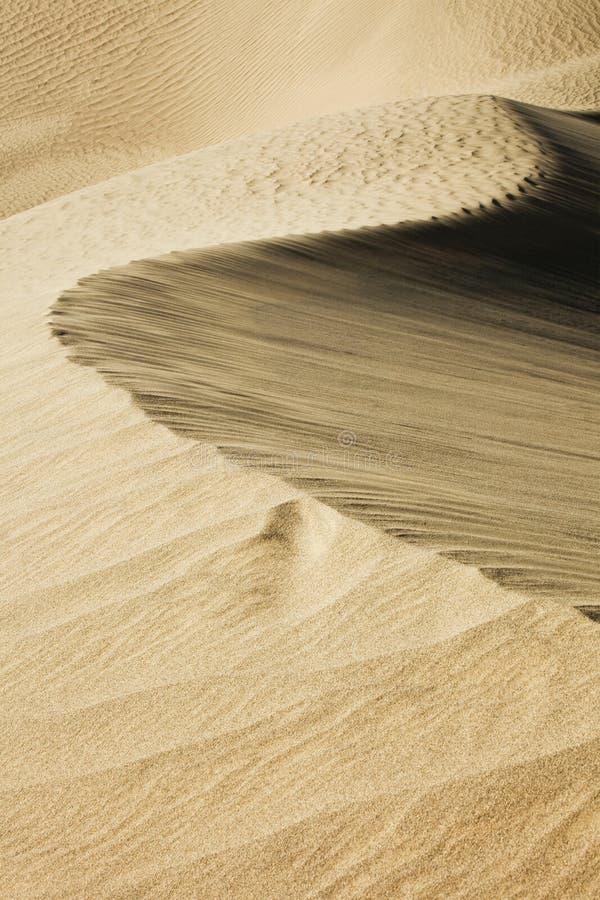 Líneas del desierto fotografía de archivo libre de regalías