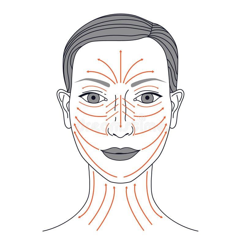 Líneas del masaje libre illustration