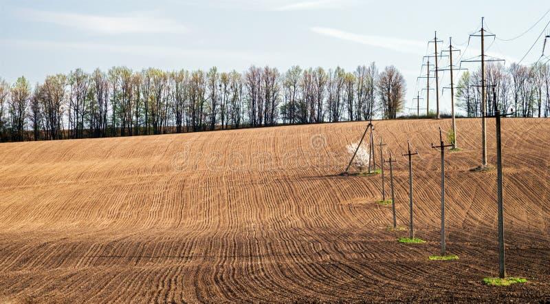 Líneas eléctricas y árbol frutal de florecimiento en el medio del campo arado imágenes de archivo libres de regalías