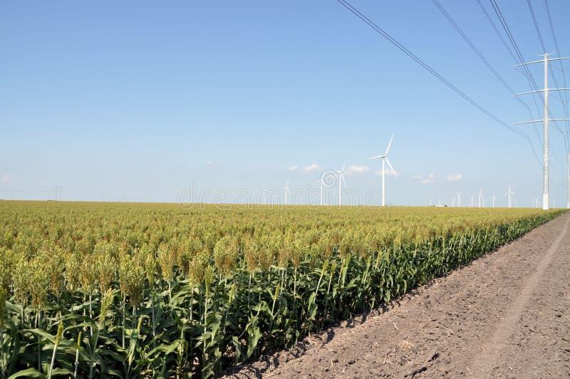 Líneas eléctricas y turbinas de viento foto de archivo libre de regalías