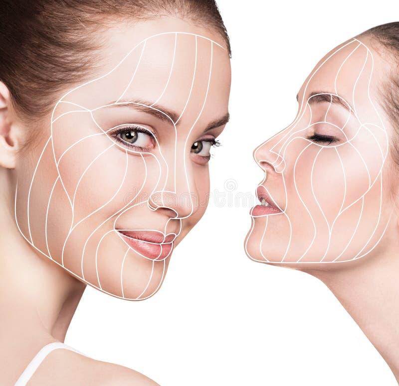 Líneas gráficas que muestran efecto de elevación facial sobre piel imágenes de archivo libres de regalías