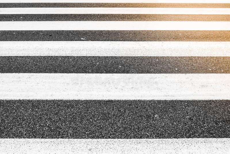 Líneas paralelas de paso de peatones, modelo áspero del asfalto, ninguna persona, luz del sol en una esquina foto de archivo libre de regalías