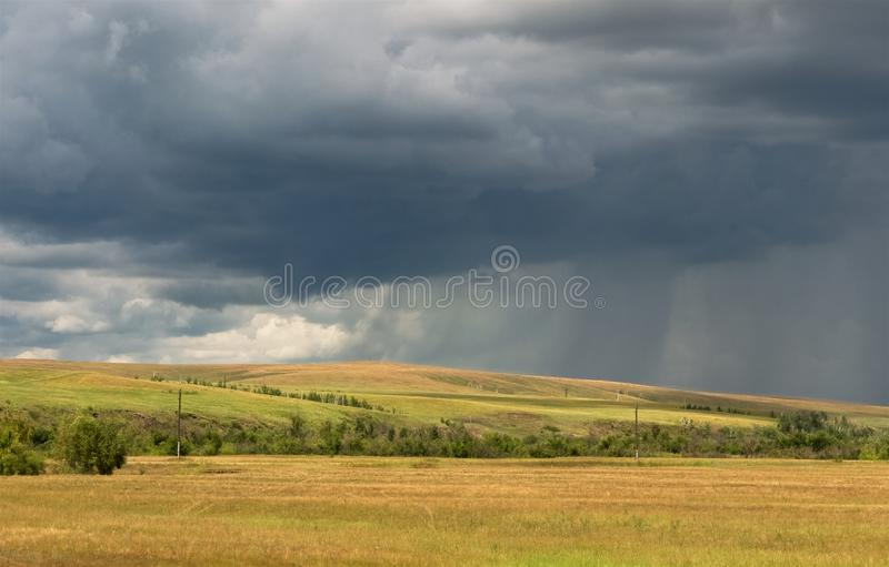 Líneas tempestuosas grises del cielo y de la lluvia sobre campos amarillos fotos de archivo libres de regalías