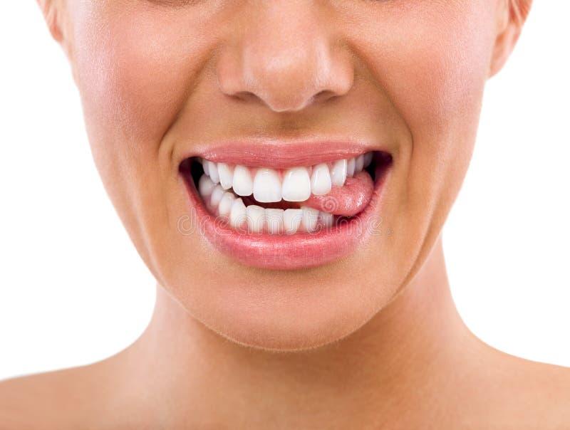 Língua cortante fêmea com dentes perfeitos imagens de stock royalty free