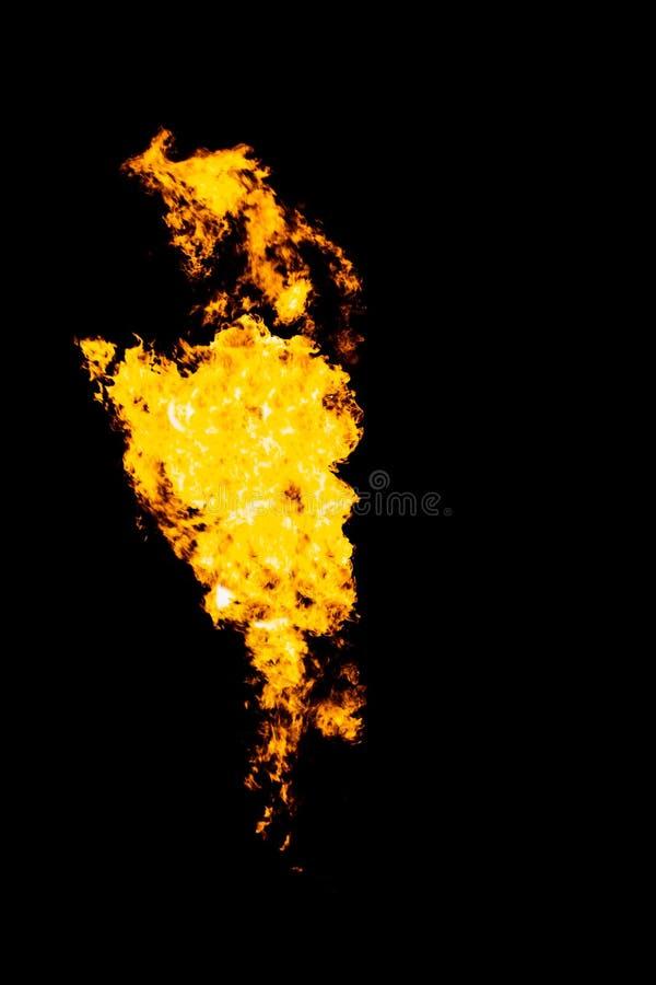Língua isolada do fogo, textura da chama foto de stock royalty free