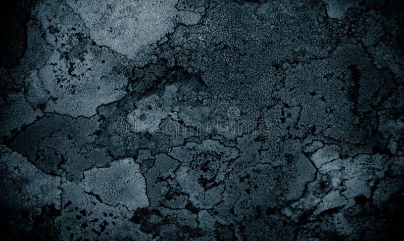 Líquene no contexto do sumário do fundo do sumário da rocha do líquene e fundo de pedra/áspero da textura fotografia de stock royalty free