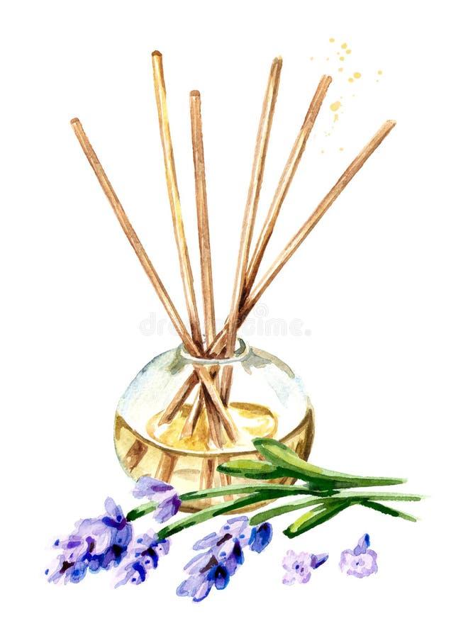 L?quido de la lavanda en una botella de cristal con palillos y una flor ambientador ejemplo dibujado mano de la acuarela, aislado ilustración del vector