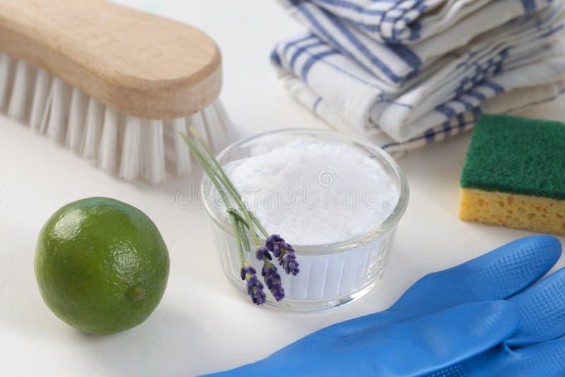 líquidos de limpeza naturais Eco-amigáveis imagem de stock
