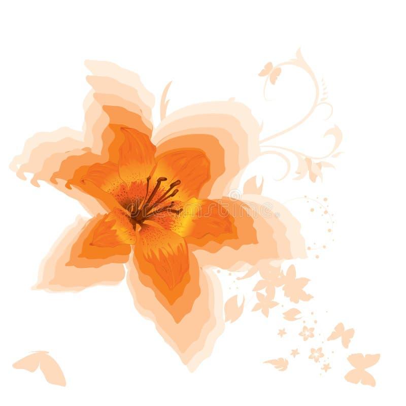 Lírio alaranjado bonito ilustração royalty free