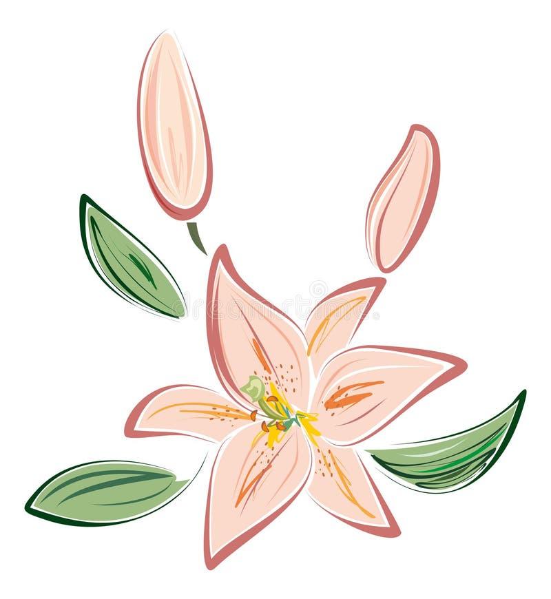 Lírio cor-de-rosa ilustração stock