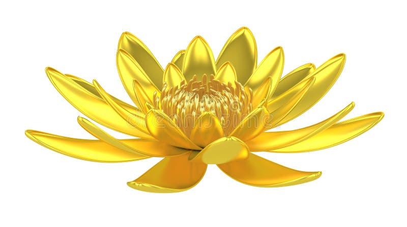 Lírio de água dourado da flor de lótus ilustração stock