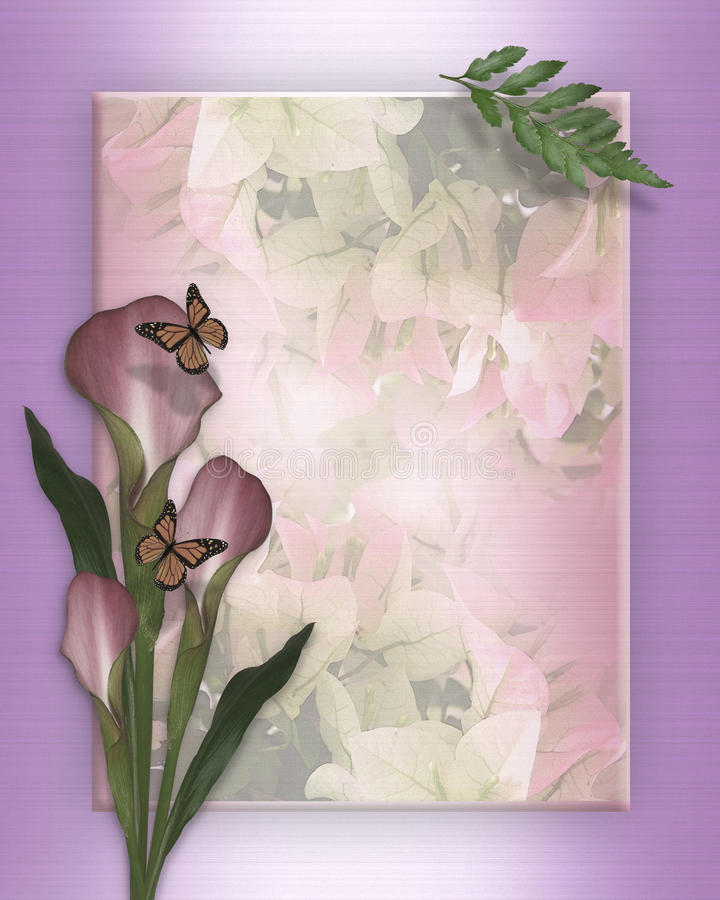 Lírio de Calla e molde das borboletas ilustração do vetor
