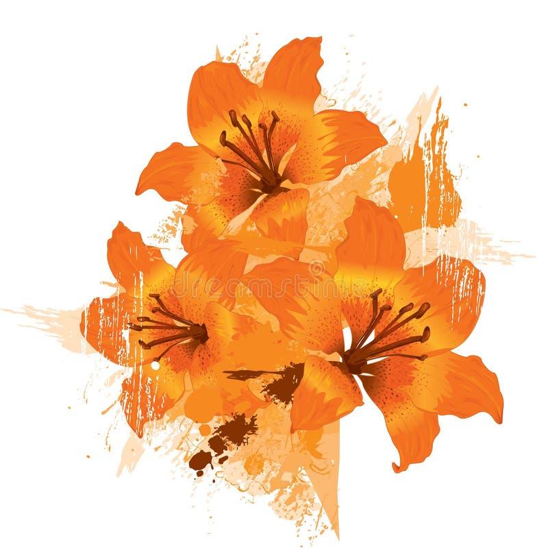 Lírio de três laranjas ilustração royalty free