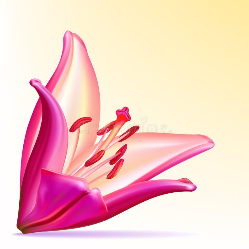 Lírio Photo-realistic do roxo-lilac ilustração royalty free