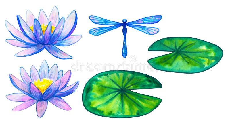 Lírios de água cor-de-rosa azuis e folhas e libélula verdes Jogo dos elementos Ilustra??o tirada m?o da aguarela Isolado no branc ilustração do vetor