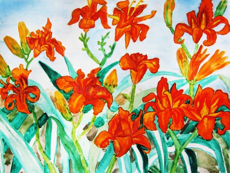 Lírios diários da laranja ilustração do vetor