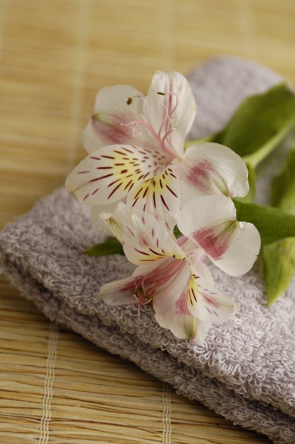 Download Lírios em uma toalha foto de stock. Imagem de fragrância - 541890