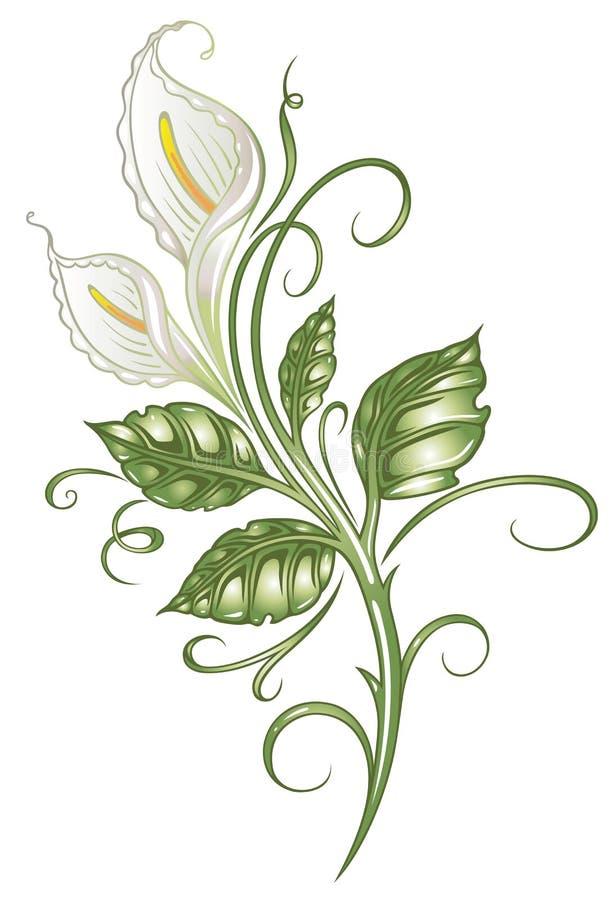 Lírios, flores, lírios de calla ilustração do vetor