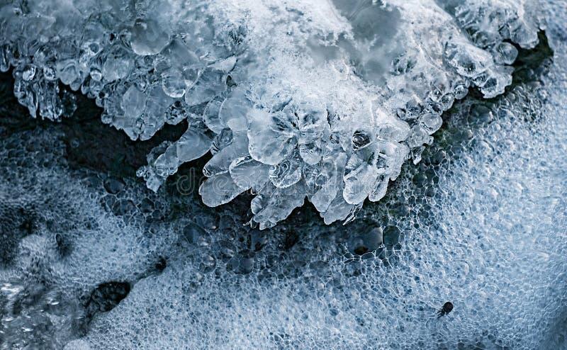 Lód nad lasu strumień obraz stock