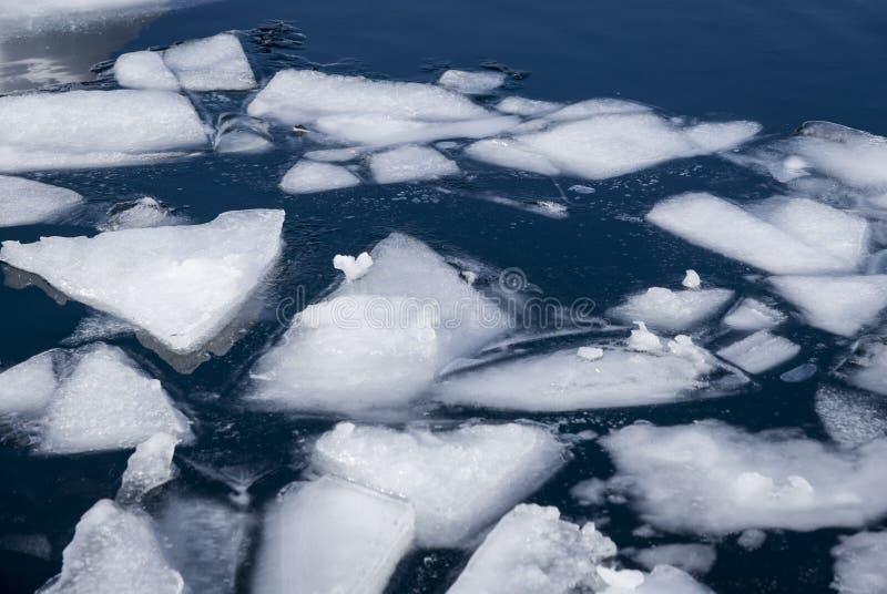 Lód unosi się przy powierzchnią w zimie fotografia royalty free