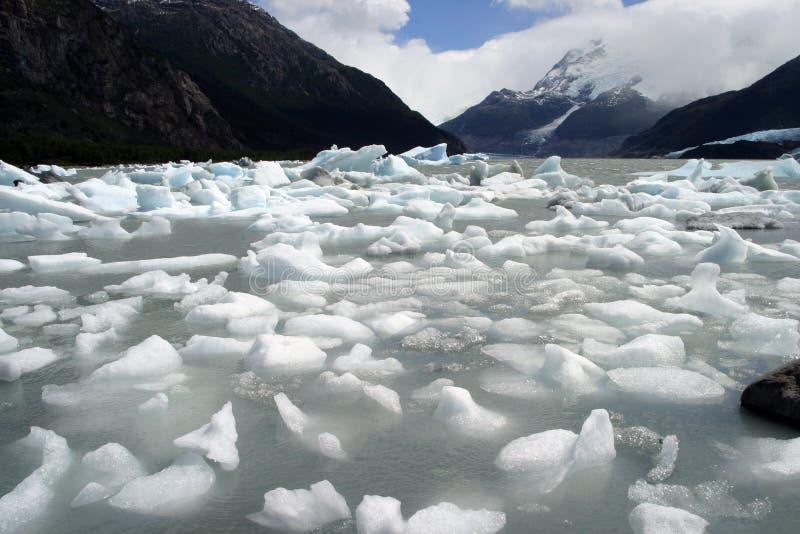 Lód w podpalanym onelli, patagonia zdjęcia stock