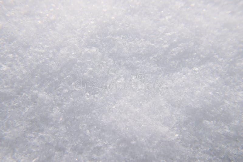 Lód - zimny iskrzasty śnieg w zimy krainie cudów zdjęcia stock
